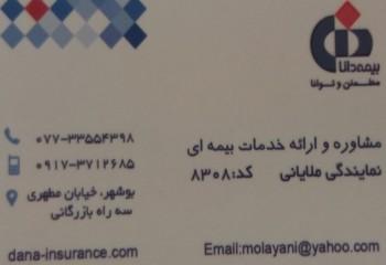 بیمه دانا